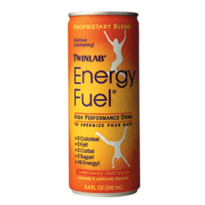 378_energy-fuel-twinlab